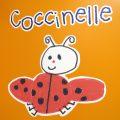 Sezione coccinelle